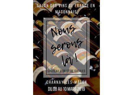 Salon des vins de France à Charnay les Mâcon